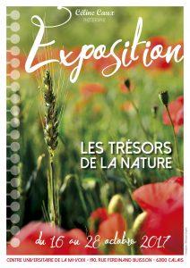 [Calais] Les trésors de la nature en quelques photos