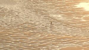 [Projection] Rêves de sable