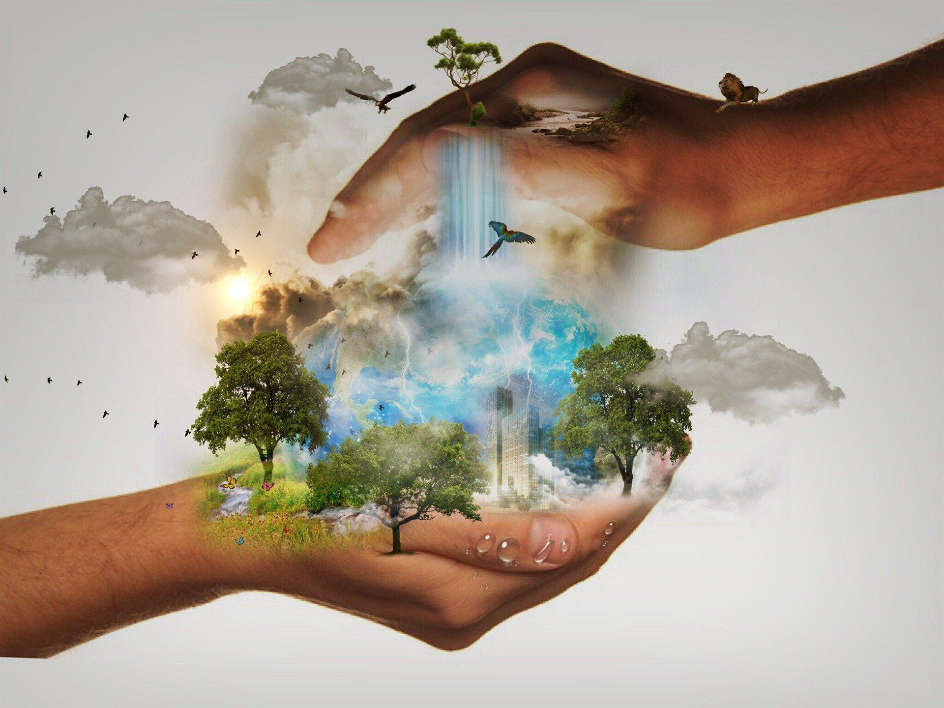 Le projet de loi «Climat et Résilience»