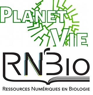 Focus sur les sites «Planet-Vie» et «RN'Bio»
